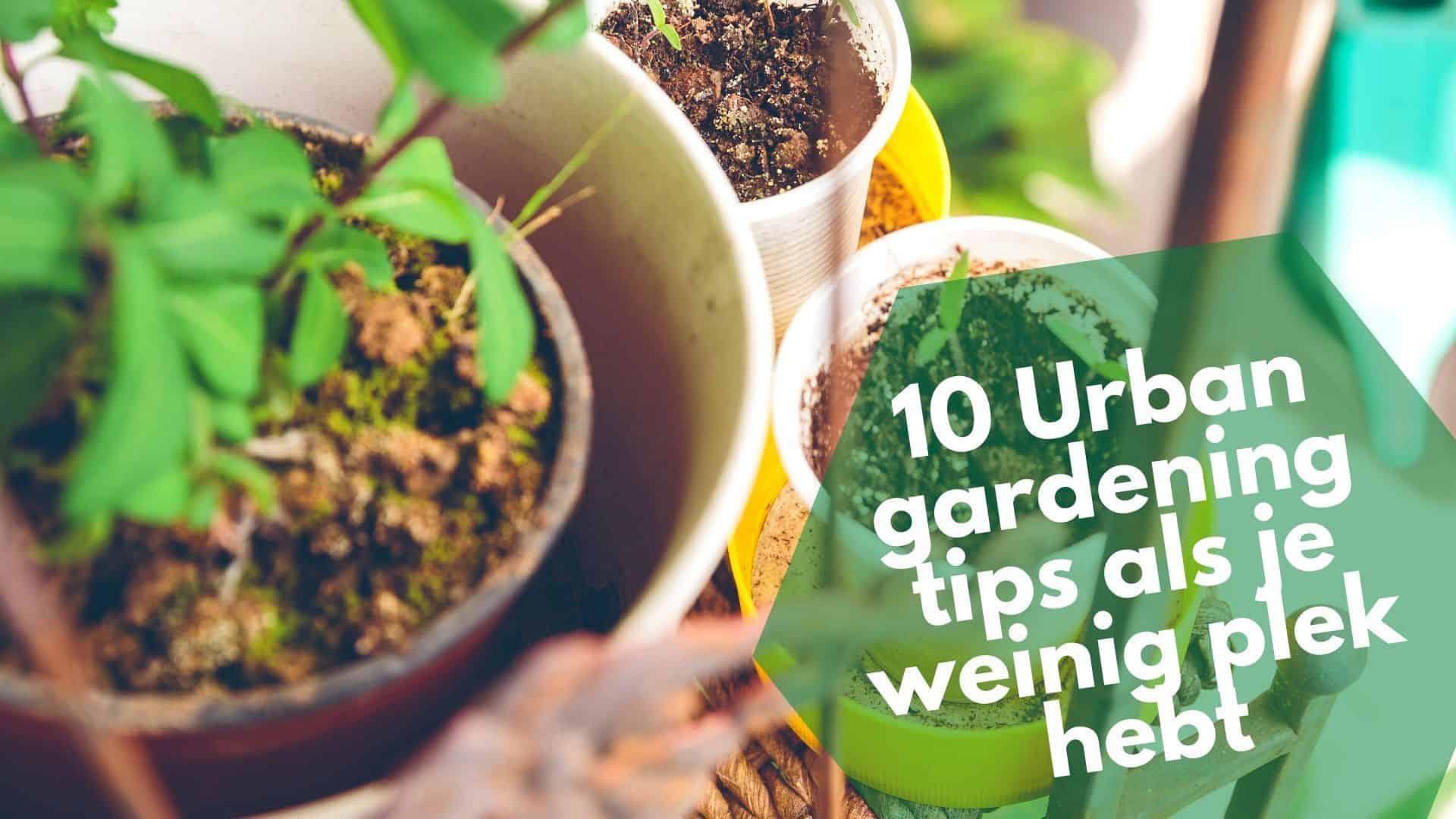 10 Urban garden tips voor als je weinig plek hebt