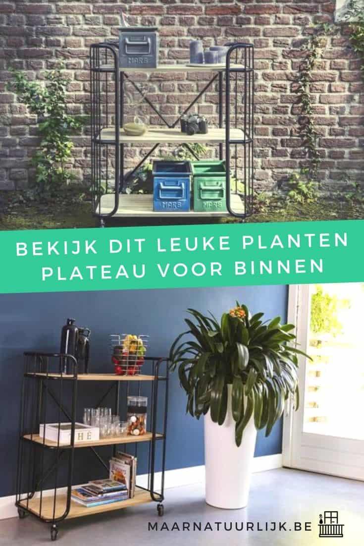 Leuk planten plateau voor binnen bakkerskar trolley