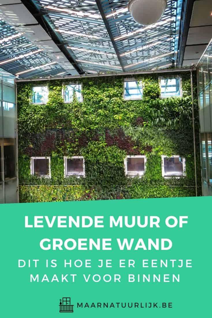 Levende muur of groene wand voor binnen maken