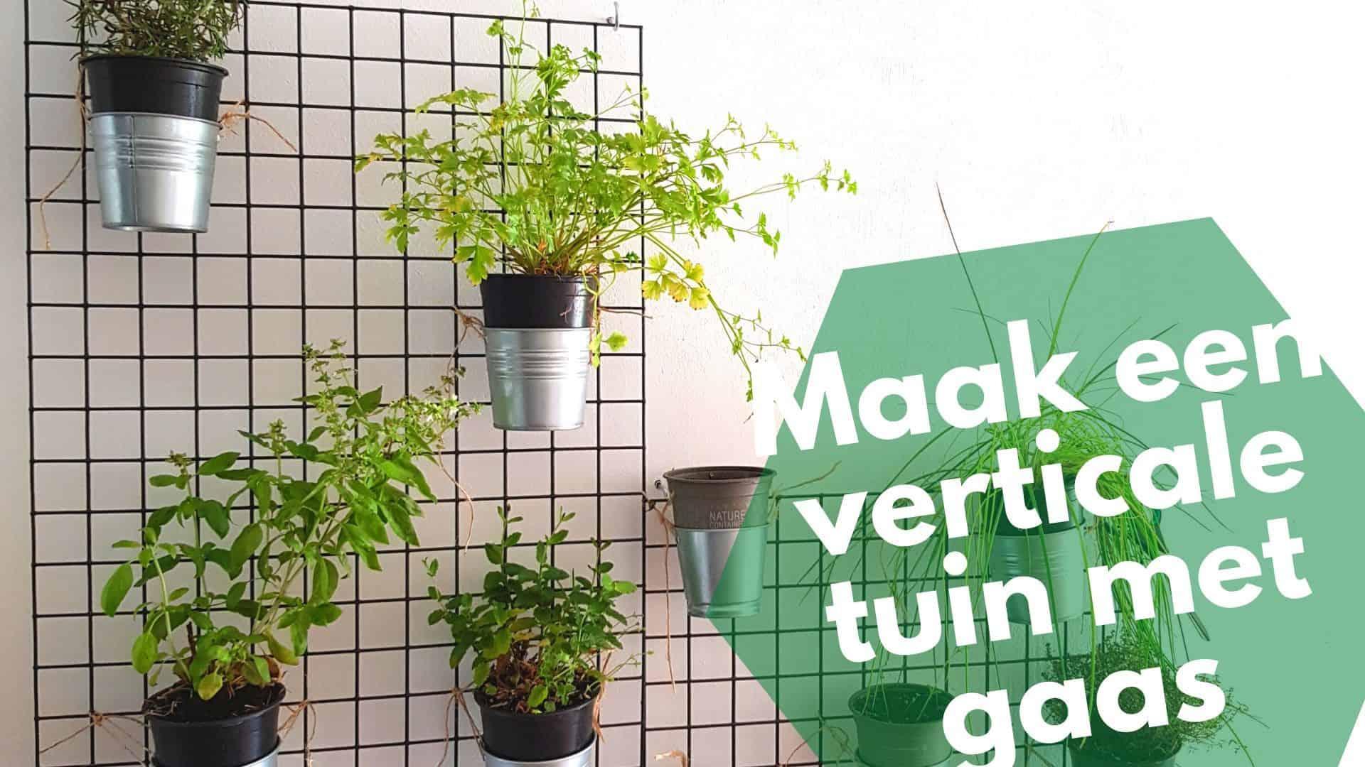 Maak een verticale tuin met gaas – zo uit de bouwmarkt!
