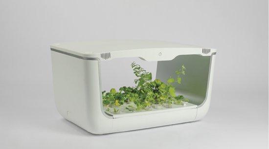 Vegebox hydrocultuur tafelmodel