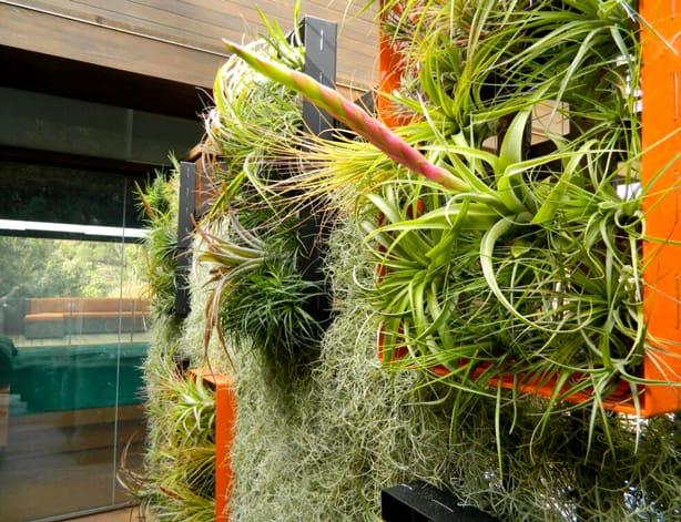 Verticaal lucht planten paneel