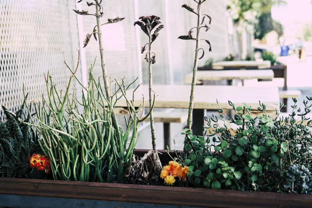 Verzonken aanrecht tuintje