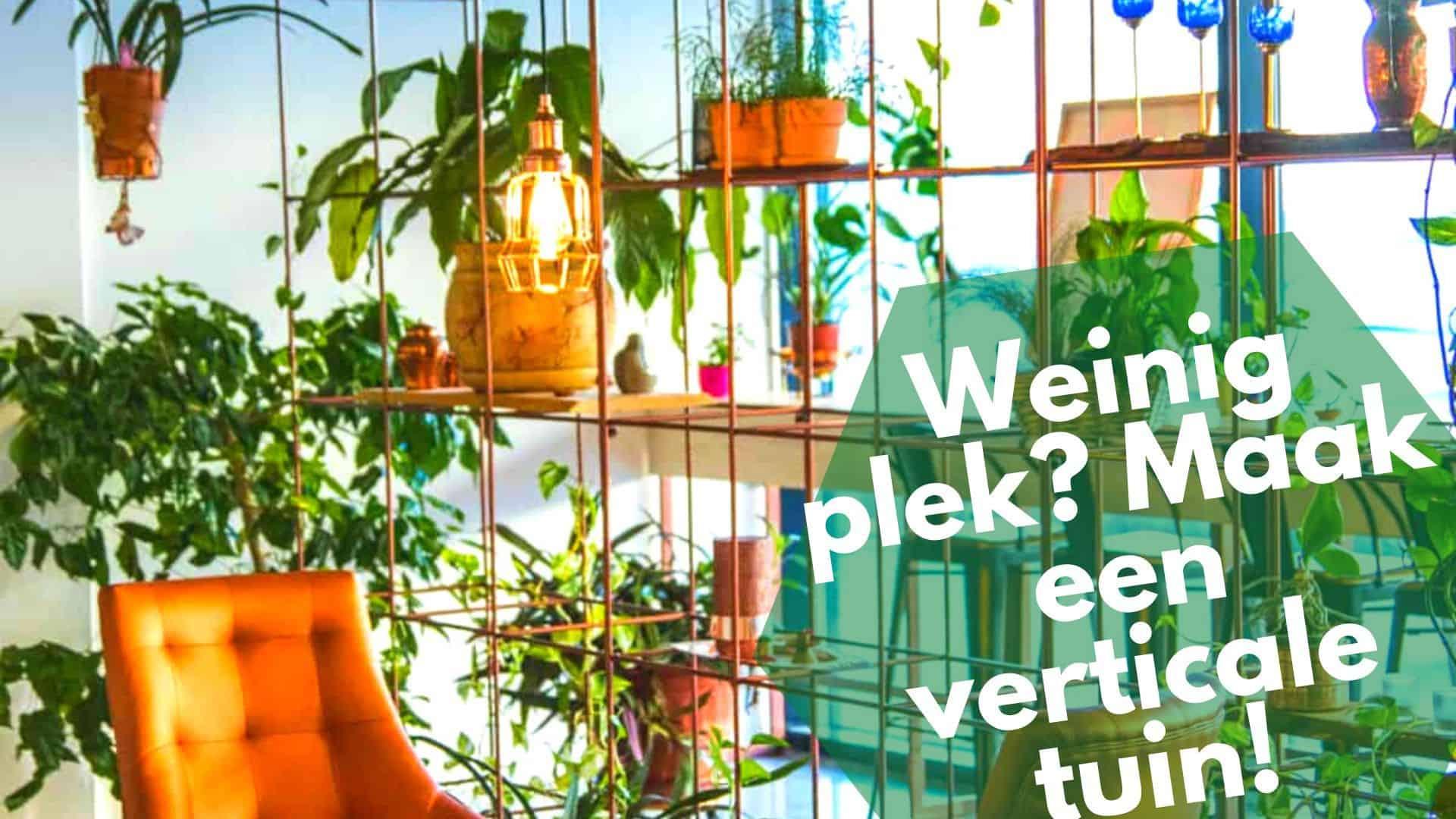 Verticaal tuinieren – weinig ruimte? Maak gebruik van je muren
