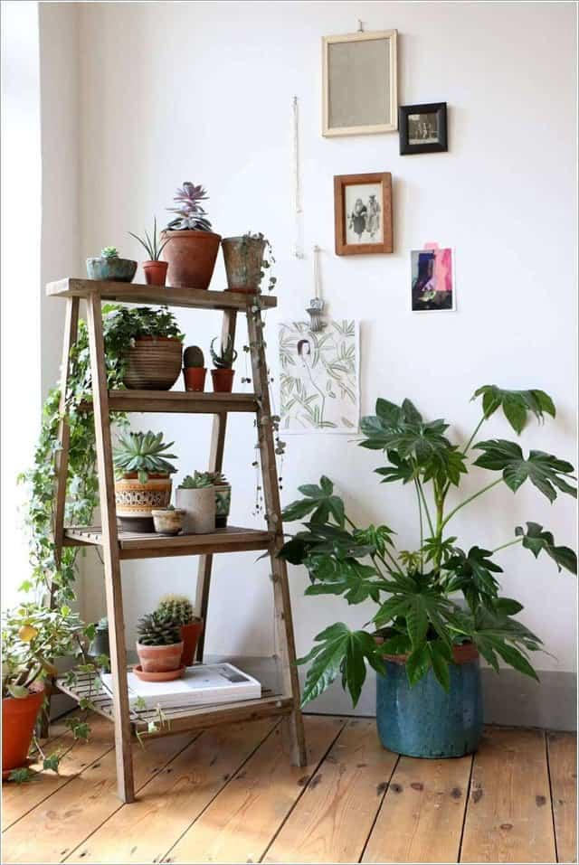 indoor ladder plantenbak