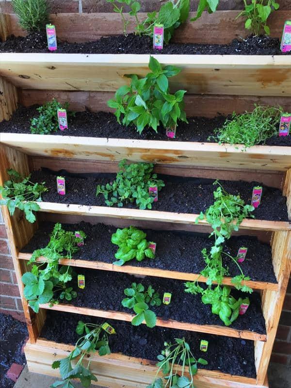 manier om kruiden verticaal te groeien urban garden