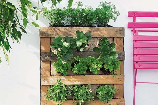 munt in een diy pallet