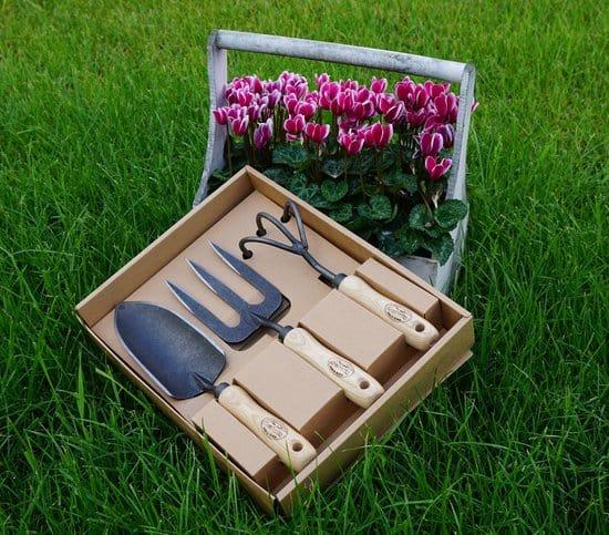 DeWit Garden Tool Set
