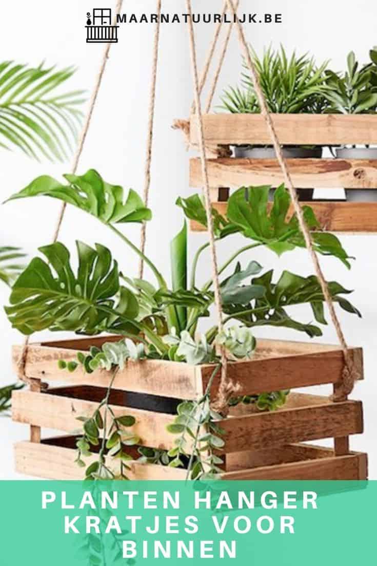 Planten hanger kratjes voor binnen