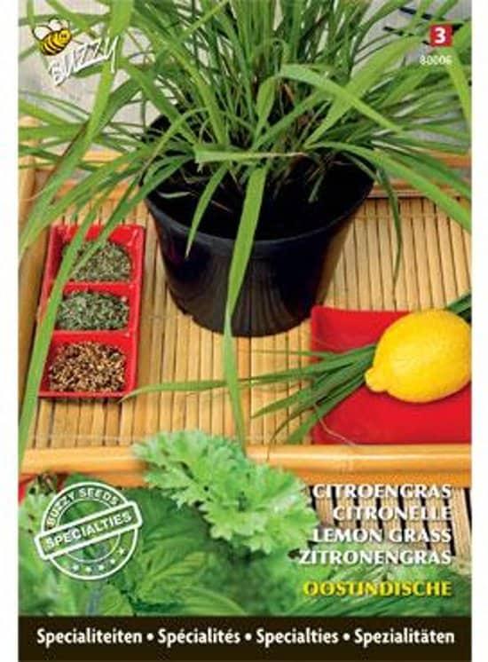 Citroengras-binnen-kweken