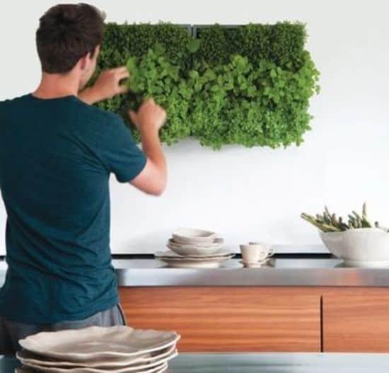 Karoo-verticale-plantenbak-kant-en-klaar