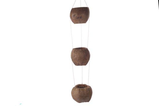 Kokosnoot-planten-hanger