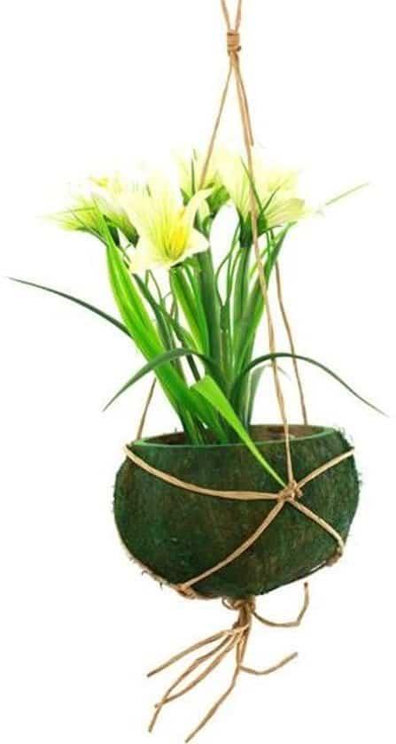 Kokosnoot-plantenhanger