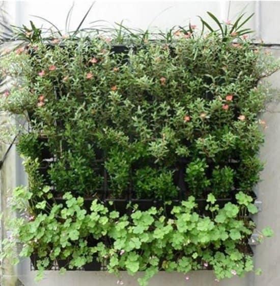 Verticale-tuin-aanleggen-met-zakken-van-Quvio