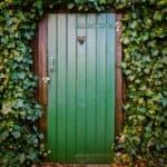 Beste klimop voor je tuin | groene schutting en muur met deze top 6