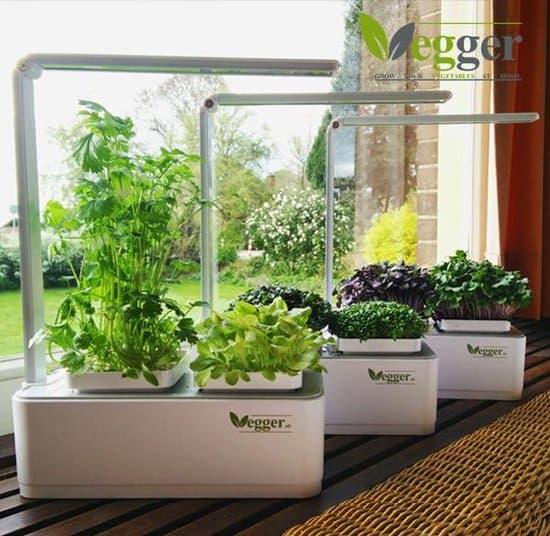 Beste kruidenbak voor binnen: Vegger Smart Indoor Garden