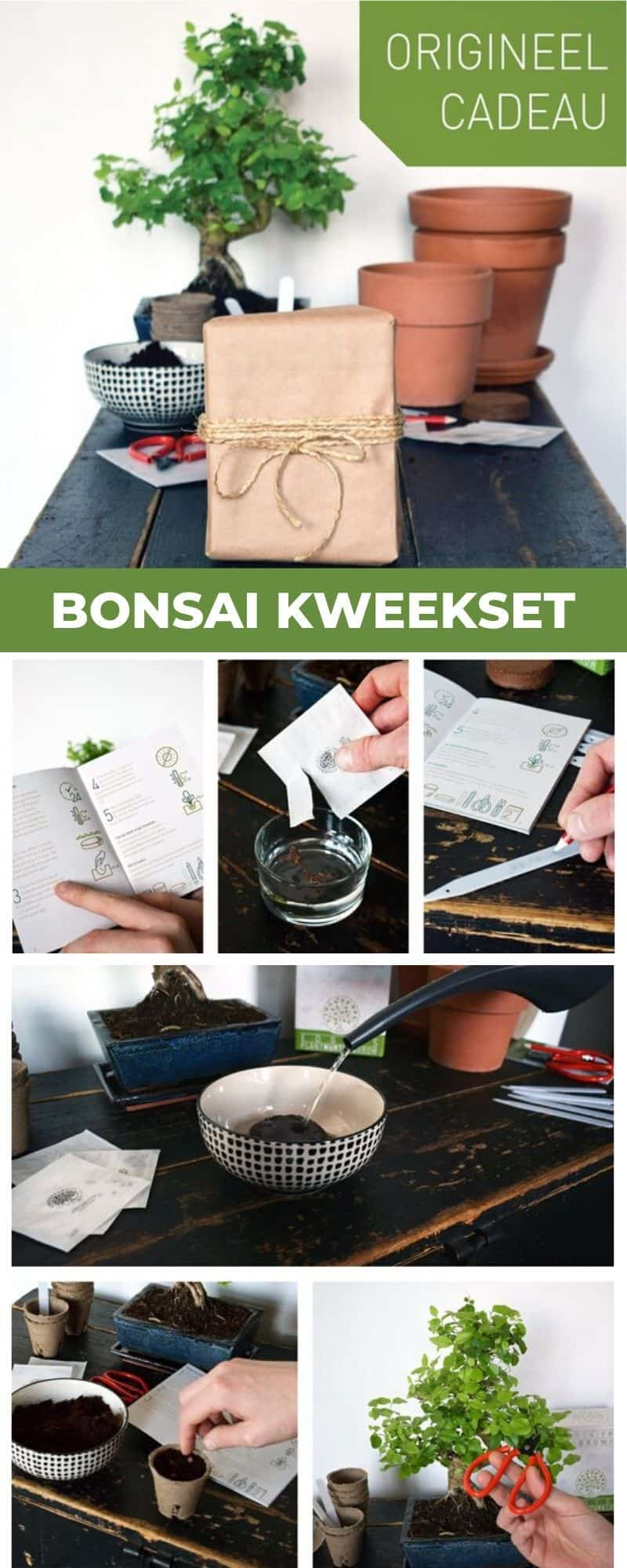 Bonsai kweekset
