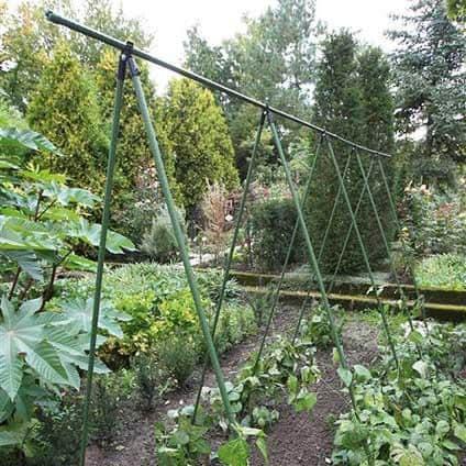 Plantenstokkenset 210cm 12 stuks beste moestuin klimrek