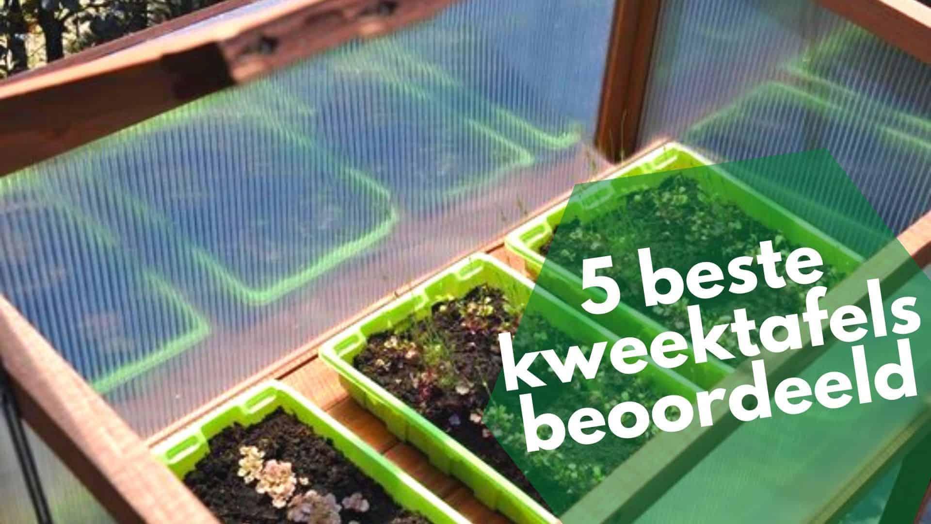 Beste kweektafel | Handig tuinieren met deze top 5