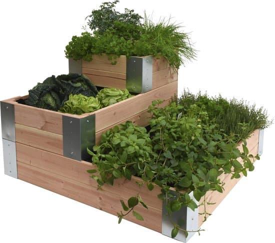 Beste moestuinbak in trapvorm: Douglas minigarden hoekmodel