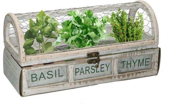 Kruiden Kweekset - Starter Kiemen Kweek Plant Set Met Tijm : Peterselie : Basilicum Zaden - Thuis Zelf Moestuin Kweken