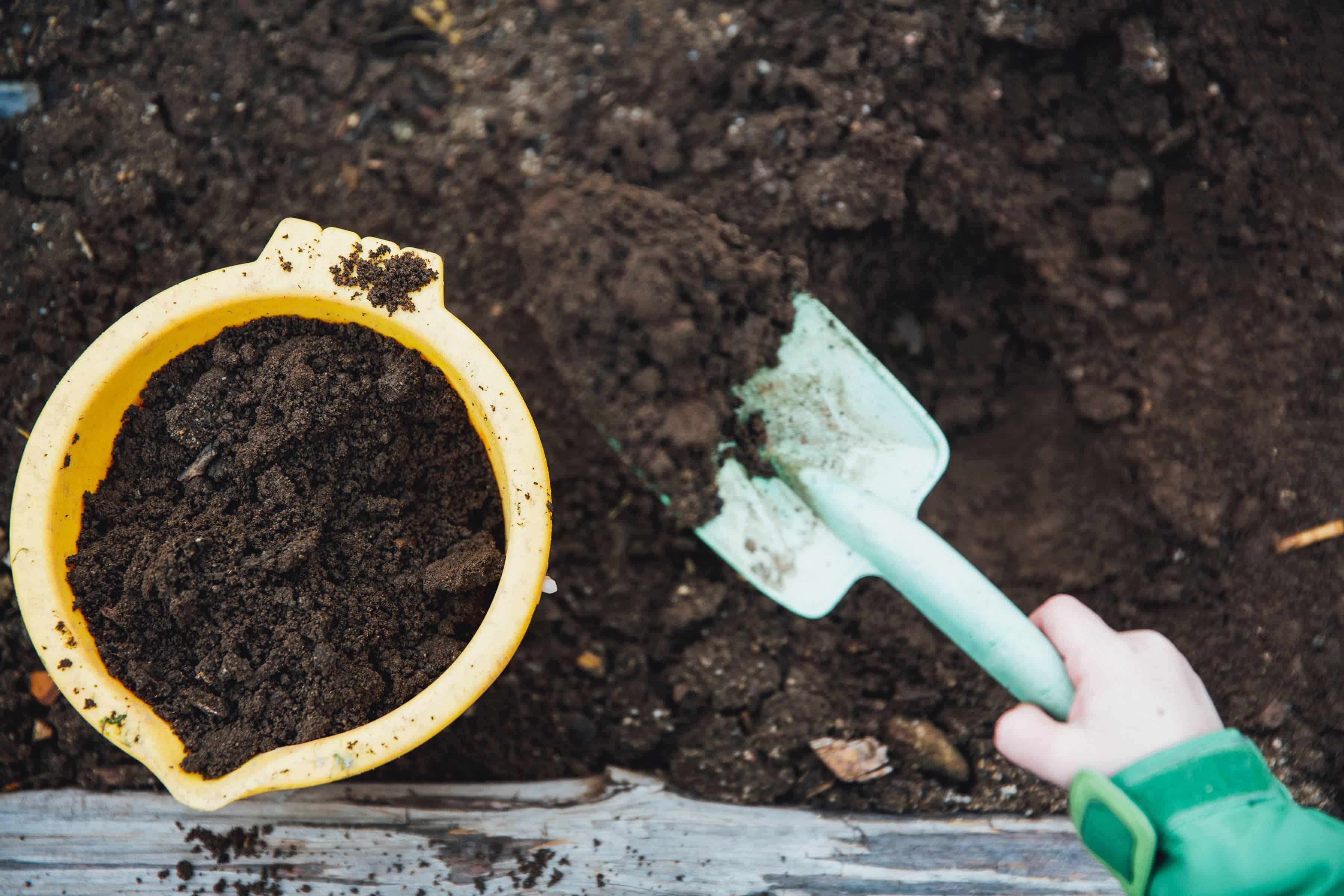 Bereid de grond goed voor beste kweektafel