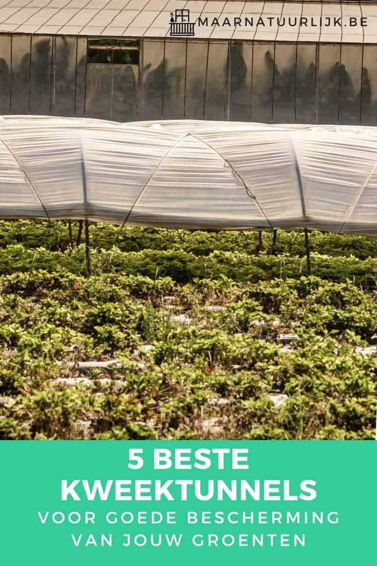 5 beste kweektunnels voor goede bescherming van jouw groenten