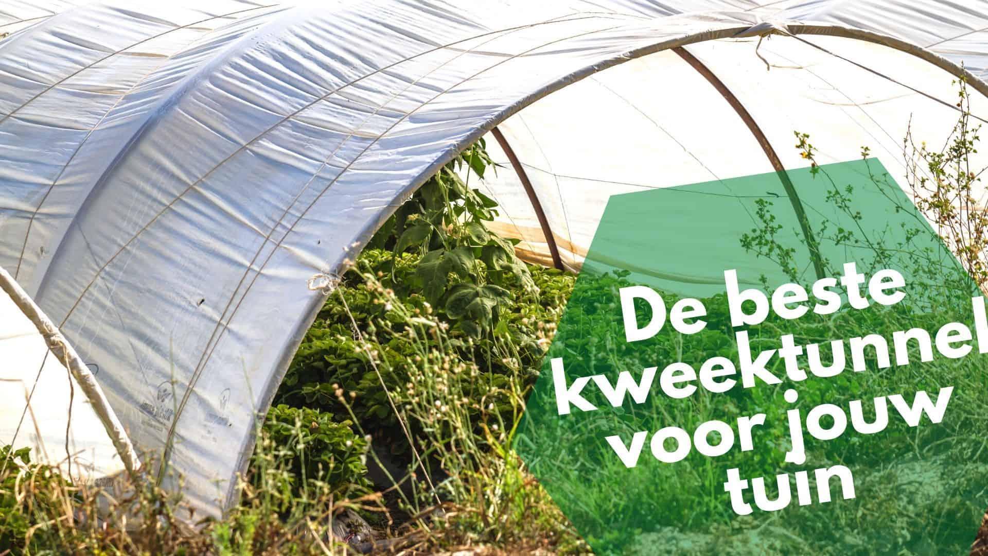Beste kweektunnel | Voor goede bescherming van jouw groenten