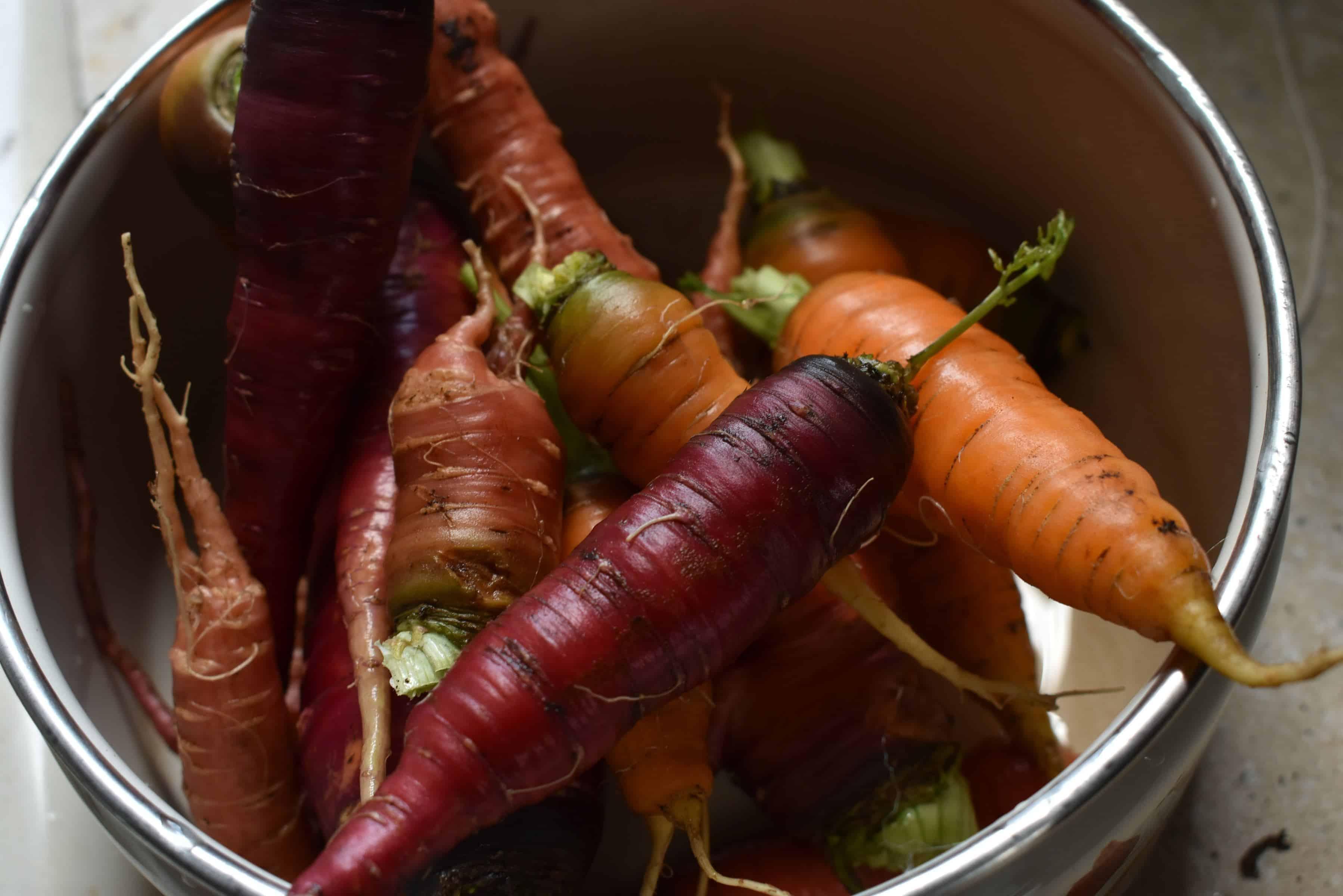 Groenten om te kweken in een kweektunnel
