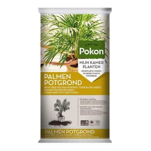 Beste potgrond voor palmen planten
