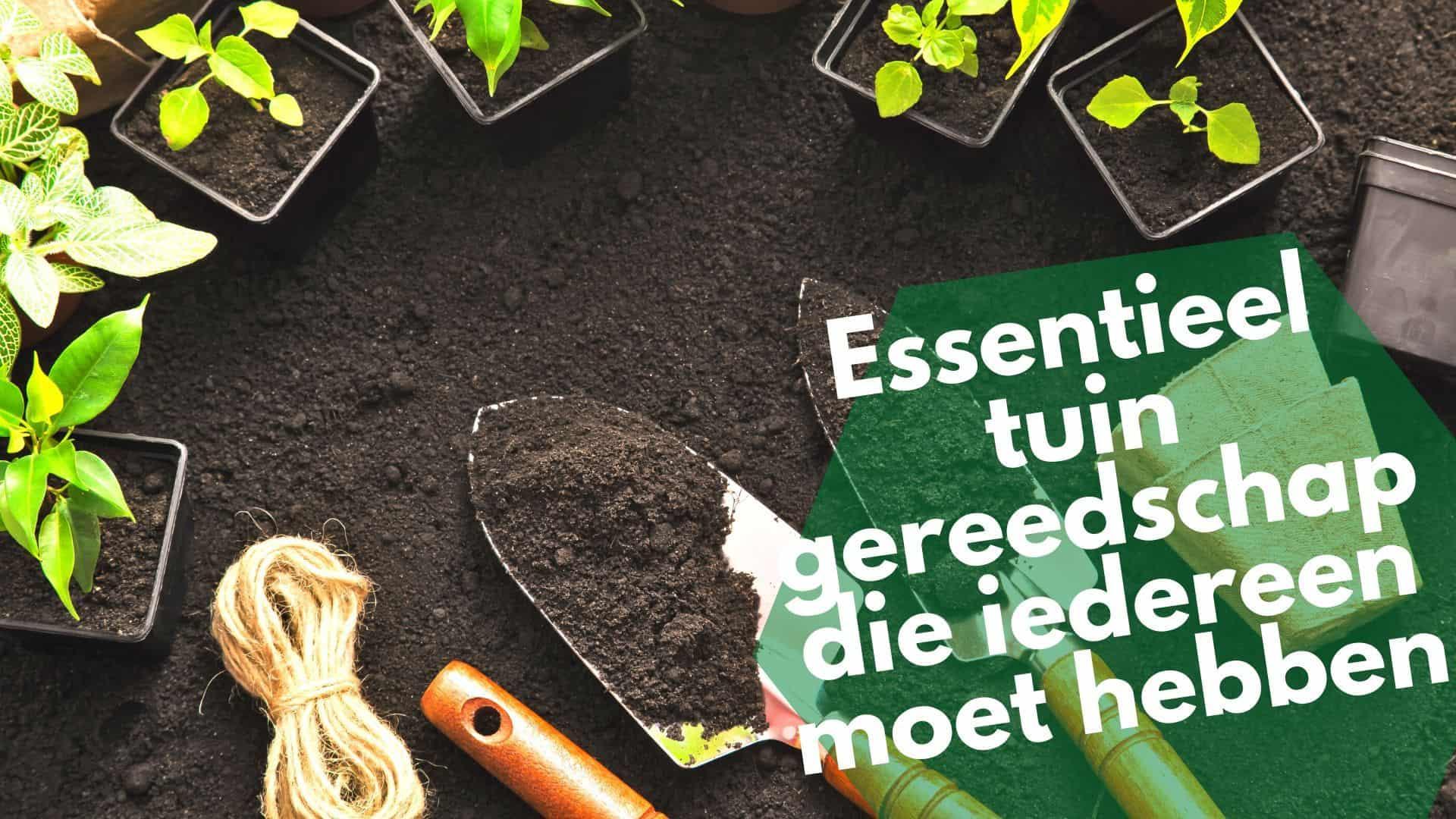 Essentieel tuin gereedschap | De handigste tuin tools + opbergtips