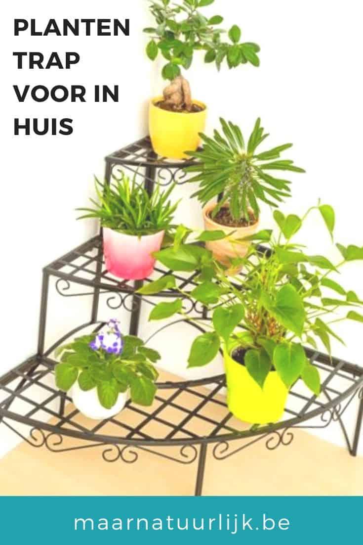 Leukste plantentrap voor in huis