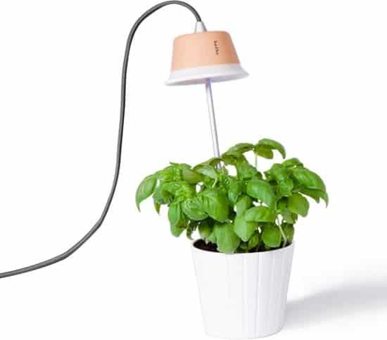 Beste LED kweeklamp voor thuis Bulbo Cynara 7 Watt met grijze kabel