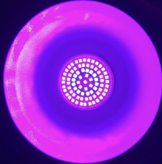 Beste goedkoop LED Groeilamp 80 leds kweeklamp