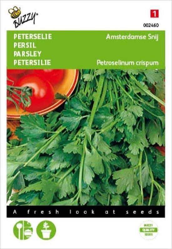 Peterselie zaden Petroselinum crispum