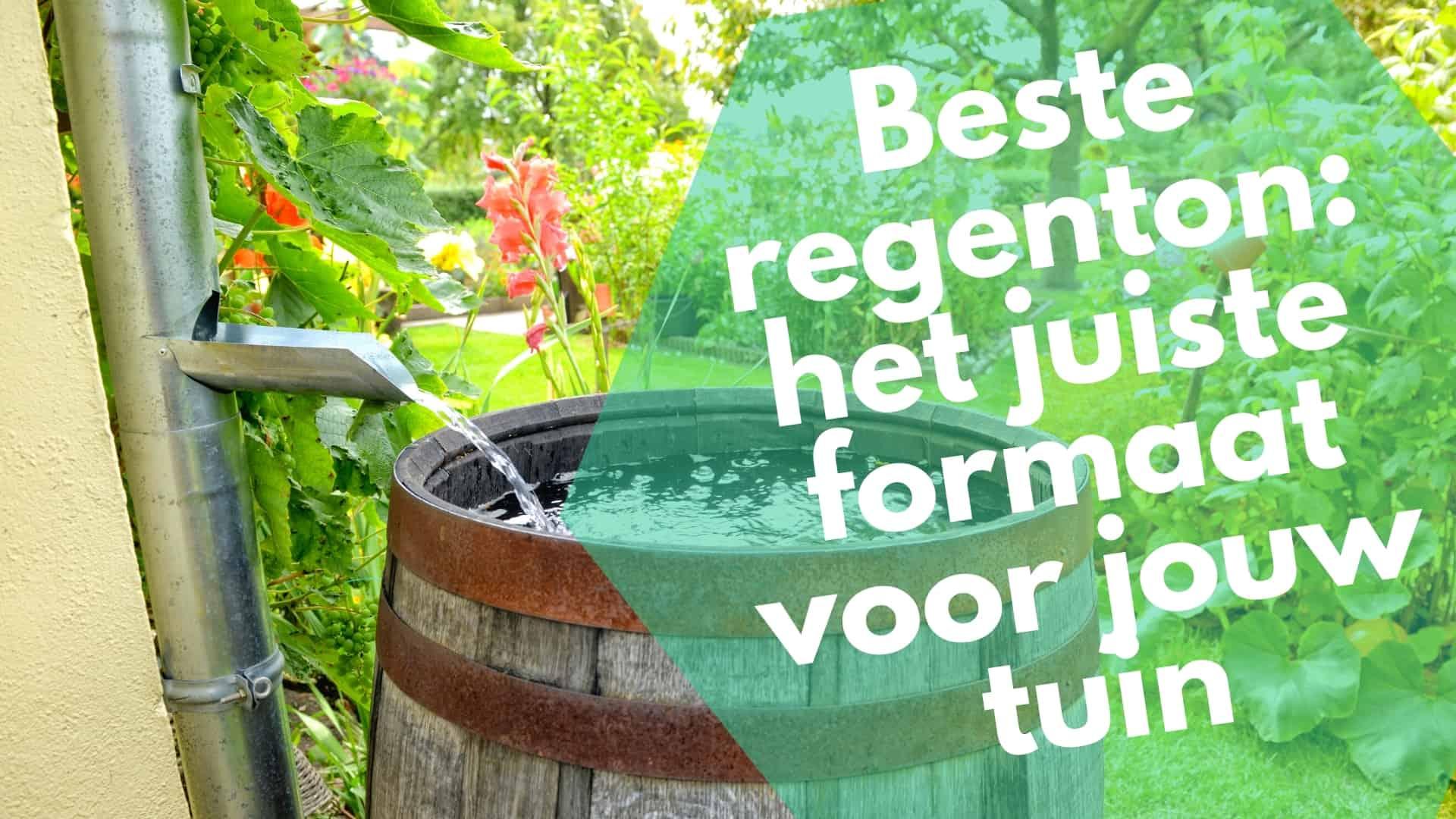 Beste regentonnen beoordeeld: het juiste formaat voor jouw tuin