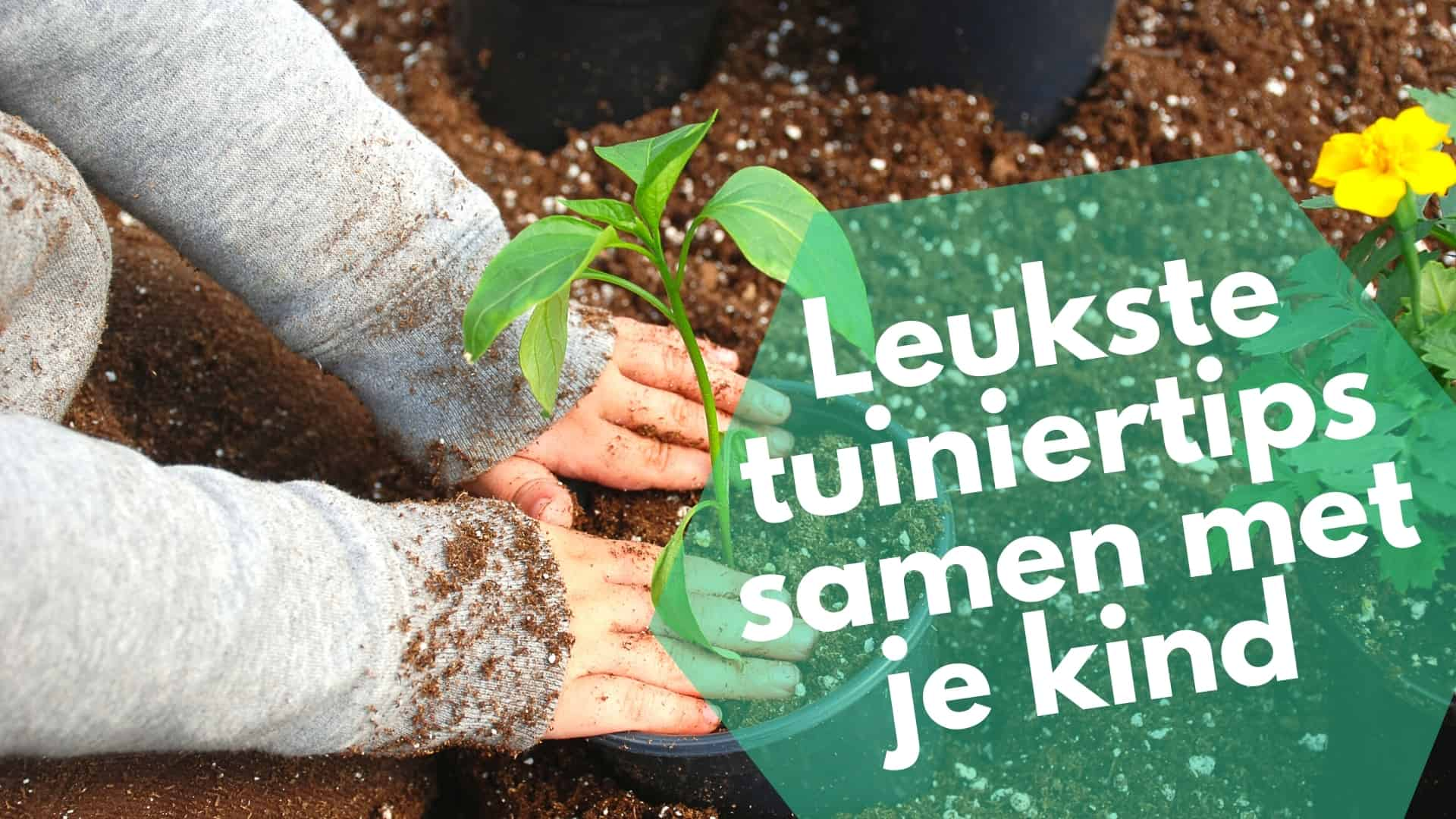 Tuinieren met je kind: tips voor een leuke tijd samen