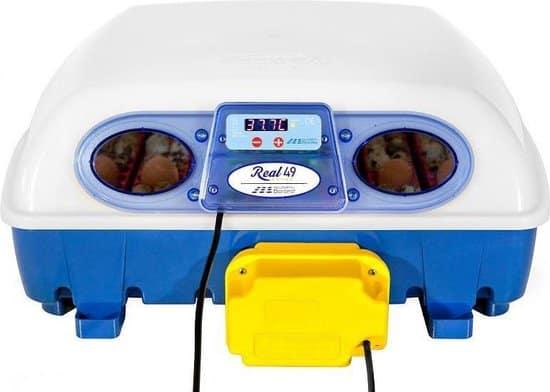 Beste broedmachine met keersysteem- Borotto Real 49